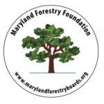 MFF_logo 300